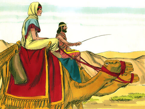 Rebekah's brother and her mother wanted her to stay for ten days but the servant insisted they left right away. So her family blessed her and Rebecca and her attendants travelled south to Canaan. Isaac was in a field when he saw the camels arriving. Rebecca covered her face with a veil. – Slide 14