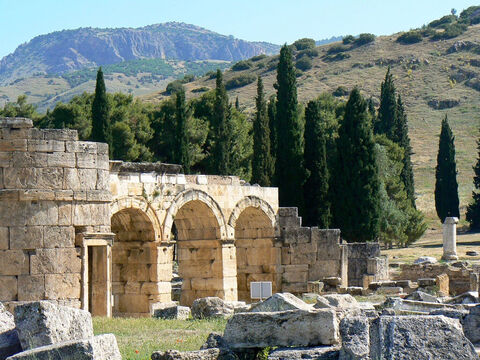 Cypress trees behind Domitian's entrance at Heirapolis in Turkey. <br/>Italian or evergreen cypress (Cupressus sempervirens). <br/>This striking tree, so common around the Mediterranean, is not mentioned by name in the Bible but is a likely candidate from which the wood of the Cross was made. The columnar form with its cigar shaped appearance makes it instantly recognisable. It has a long history or association with graveyards, cemeteries and special places, but the reason why it may have been the wood of the cross is that it was a common tree with a straight trunk. Other candidates would be Aleppo pine or Cyprus pine. <br/>Uncertainty about the wood is that there is so little archaeological evidence for crucifixion, though there are numerous references to this awful means of execution in classical literature. Wood does not survive for long in ground contact so we can't expect to find old crosses. The one bit of archaeology that does shed some light was the discovery of the bones of a crucified man with a nail still present through the ankle bone. At the head end of the nail was a small plaque or 'washer' made from olive wood. Was this to prevent the victim from freeing his foot or, more likely, to staunch the flow of blood to prolong death and inflict further torture? <br/>Cypress wood may possibly have been used for Noah's Ark as the term 'gopher wood' has implications of resinous i.e. a conifer, pitch for caulking etc. – Slide 7