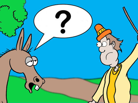'What have I done that deserves your beating me these three times?' the donkey asked. <br/>You have made me look like a fool!' Balaam shouted back at the beast. 'I wish I had a sword with me to kill you.' – Slide 7