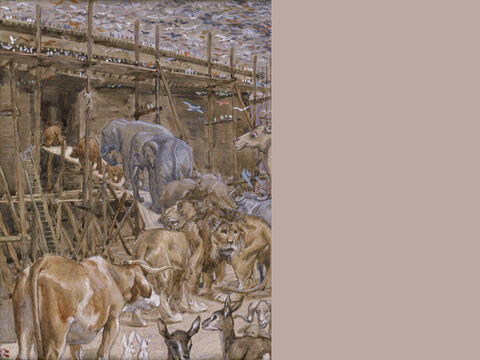 The animals enter the Ark. <br/>(Full Painting). <br/>James Tissot (1836-1902). <br/>The Jewish Museum, New York. – Slide 11