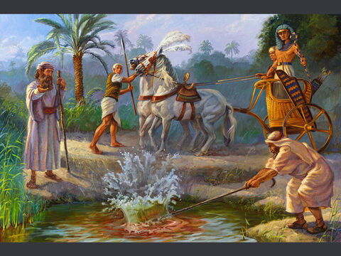 The first plague: water changes to blood. <br/>Moses and Aaron did just as the LORD had commanded. He raised his staff in the presence of Pharaoh and his officials and struck the water of the Nile, and all the water was changed into blood. <br/>Exodus 7:20 <br/>Full text: Exodus 7:14-23 – Slide 3