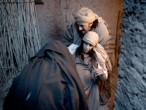 Mary was taken into the stable ... – Slide 6