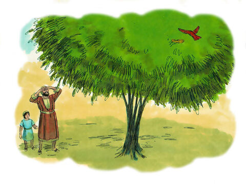 'Look at the fig tree, or any other tree. When the leaves come out, you know that summer is near. In the same way, when you see these events taking place you can be sure that the Kingdom of God is near and the end of this age has come. Heaven and earth may pass away, but my words will never pass away. – Slide 19