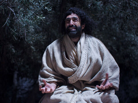 Jesus was deeply distressed and troubled. He knelt down and prayed. – Slide 3