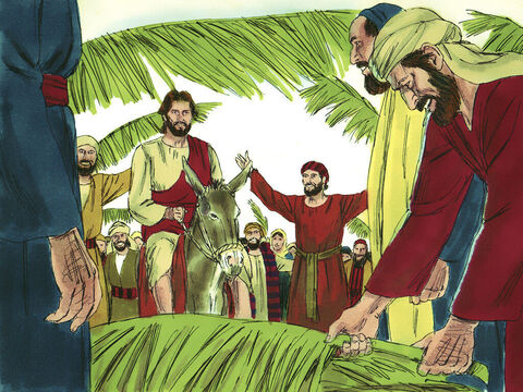 Many people spread their cloaks or palm branches on the ground for Jesus to ride over while others waved palm leaves. – Slide 7