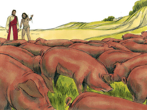 A large herd of about 2,000 pigs were feeding on a nearby hillside. The demons begged Jesus to send them into the pigs. – Slide 8