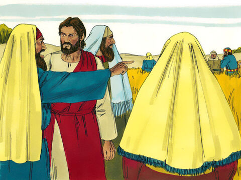 When the Pharisees saw this, they said to Jesus, 'Look! Your disciples are breaking the law by working on the Sabbath.' They were accusing the disciples of harvesting the grain by rubbing it in their hands. – Slide 2