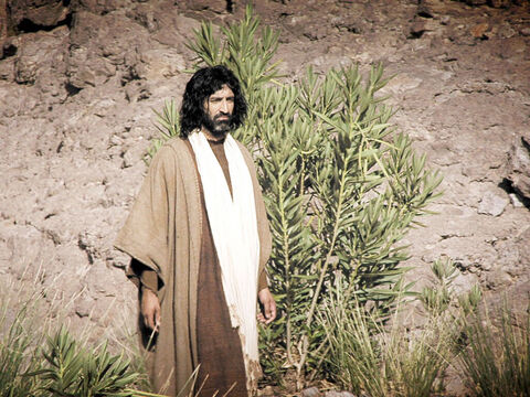 Matthew 3: 13-17, Mark 1: 9-11, Luke 3v21-22, John 1v29-34. The next day John sees Jesus coming towards him and points him out as the Lamb of God who takes away the sin of the world – the person for whom has been preparing the way. – Slide 16