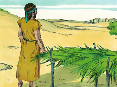 Jonah went out to a hill overlooking the city and build a shelter. He watched and waited to see if God would destroy the city. That night a vine grew up and it sheltered Jonah from the hot sun the next day. But the next day God sent a worm to destroy the vine and it withered and died. – Slide 17