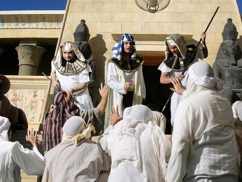 The ten brothers bowed before him with their faces to the ground. Joseph pretended not to know them. 'Where are you from?' he demanded. 'From the land of Canaan,' they replied.Joseph accused them of being spies.'No, my lord!' they protested. 'Your servants have simply come to buy food. We are all brothers of the same family. Our youngest brother is back in Canaan.' 'You are spies!' Joseph insisted. – Slide 13