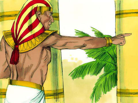 'I swear by the life of Pharaoh that you will never leave Egypt unless your youngest brother comes here! One of you must go and get your brother. I'll keep the rest of you here in prison. Then we'll find out whether or not your story is true.' – Slide 4