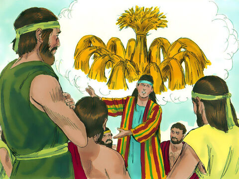 Joseph then had a strange dream that he shared with his brothers. 'We were binding sheavesof grain out in the field,' explained Joseph, 'when suddenly my sheaf rose and stood upright, while your sheaves gathered around mine and bowed down to it.' – Slide 3