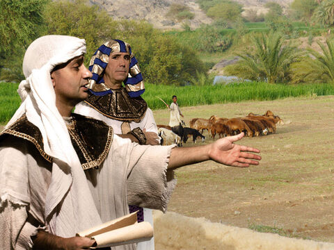 Potiphar decided to promote Joseph to be in charge of his household servants and those working outside in the fields for him. Joseph was very good at taking charge and ran everything very well. – Slide 3