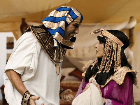 Potiphar was furious. Immediately he gave orders for Joseph to be arrested and taken to prison. – Slide 22
