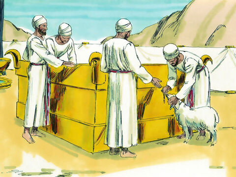 One tribe however, the Levites, were not to be given land as they were priests of the Lord. They consulted with Eleazar the High priest, Joshua and leaders of the other tribes. saying, 'The Lord instructed Moses to give cities to the Levites for our homes, and pasture land for our cattle.' – Slide 6