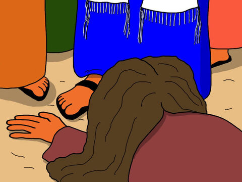 The woman cried and fell at Jesus' feet. 'It was I who touched you!' she confessed. – Slide 16