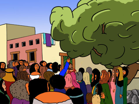 When Jesus came to the tree where Zacchaeus was sitting, He did not pass underneath but stopped, looked up, and shouted, 'Zacchaeus! Zacchaeus!' – Slide 26