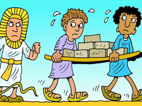 The children of Israel grew up to be big and strong and had to work hard for Pharaoh. King Pharaoh said, 'I will take away all the baby boys before they are stronger than me.' – Slide 1