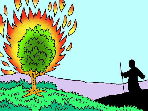 Suddenly Moses saw something very strange in the distance. A green bush was on fire, but it was not burning up! – Slide 4