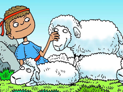David was a good shepherd boy. He cared for all the sheep. David prayed and asked God to keep them safe. – Slide 2