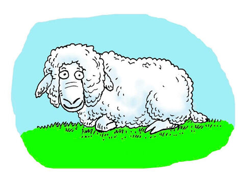 David was the youngest son of a shepherd. He learnt to look after sheep from an early age. He cared for them and protected them from harm. – Slide 1