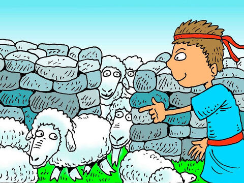 David knew every sheep by name. At night he would find a safe place for his sheep to sleep. He counted them to see that they were all there. – Slide 4