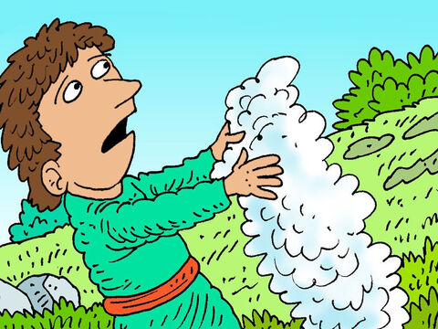 Gideon was scared and asked God, 'If you really want me to lead an army please show me a sign. Look I have a sheep fleece here, all dry and woolly.' – Slide 3