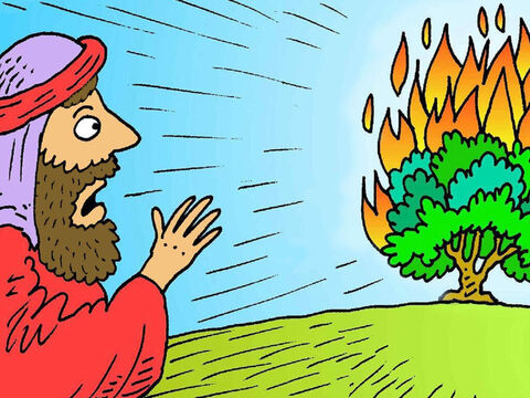Moses was looking after his sheep one day when he saw a fire in a little bush. The bush didn't burn up, so he went closer to look and God talked to him out of the bush. – Slide 1
