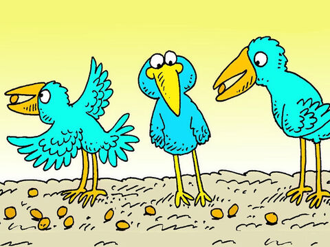 Some seed fell onto good ground but birds came and ate it. That good seed was lost too. – Slide 4