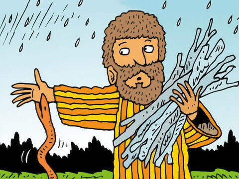 He didn't see a poisonous snake, called a viper, hiding in the sticks. The poisonous snake bit Paul on his hand and hung on tight. – Slide 3