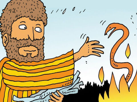 Paul shook the snake into the fire and prayed that God would protect him from the poisonous snake venom that would kill him. – Slide 4