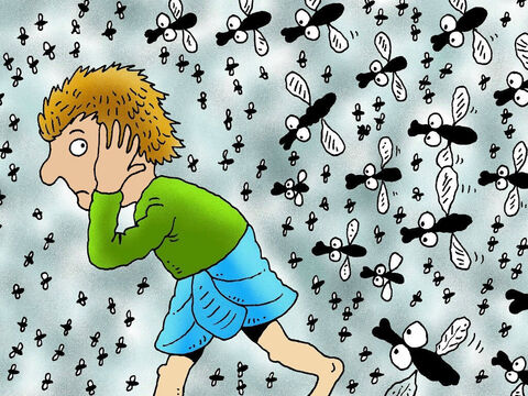Then God sent swarms of flies all over Egypt, but there were no flies at all in the land of Goshen. The plague of flies was so bad that Pharaoh was forced to send for Moses and Aaron. – Slide 7