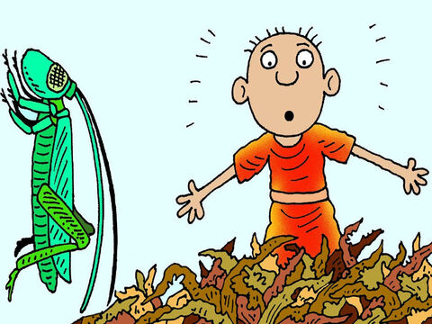 Then God sent a great swarm of locusts throughout the land of Egypt. They ate everything that was green and good to eat, but the locusts did not eat the crops belonging to the Israelites. – Slide 5