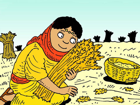 Ruth worked in the fields belonging to Boaz, her dead husband's uncle. Boaz told his workers to drop plenty of stalks of barley for Ruth to pick up. – Slide 7