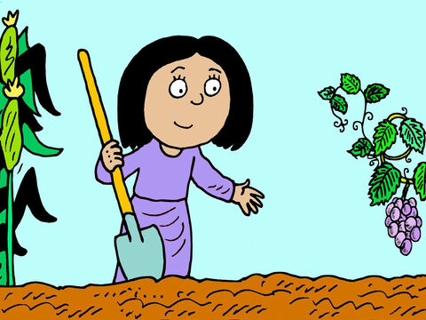 She is a good business woman, planning for the future, by wisely investing in good land and planting grapes, knowing she can make wine to sell, in years to come. – Slide 6