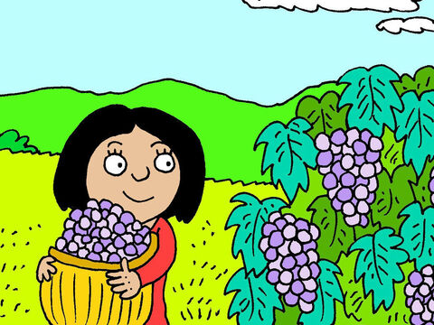 She works in the hot sun, taking care of the grapes; pruning and harvesting them, to make her dreams for the future, come to pass. – Slide 7