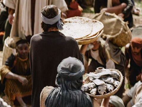 Jesus said to them, 'How many loaves do you have?' They replied, 'Seven—and a few small fish.' – Slide 6