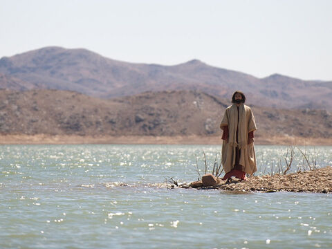 It may have been such fish that were caught when the disciples were told by Jesus to throw their nets on the other side of the boat. – Slide 4