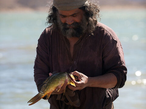 Jesus once told Peter to cast a fishhook into the Sea of Galilee. You can imagine Peter's astonishment on catching a fish and finding a silver coin in its mouth —exactly what was needed to pay the temple tax (Matthew 17:27). – Slide 10