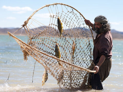 There were two main methods of fishing using nets – cast nets and drag nets. There were two types of Cast-Nets, one of a smaller mesh for sardines, and one of a larger mesh for larger fish. – Slide 11