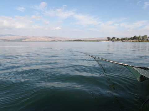 The drag net could be 1,000 feet (300m) long, hanging vertically up to 25 feet (8m) deep, with towing lines attached to each end. This is a modern drag net being used on Lake Galilee today. – Slide 16