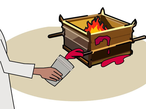 The person then killed the animal and the priests brought its blood to the altar. They had to sprinkle the blood on all sides of the altar. – Slide 4
