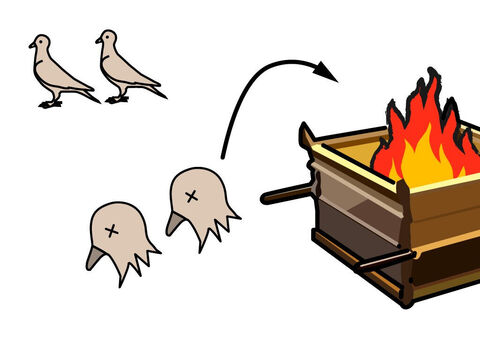If the offering was a dove or young pigeon, the priest had to wring off its head and burn it on the altar. – Slide 12