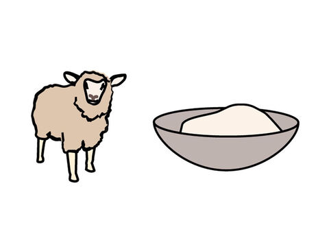 The fat of a lamb was to be burnt on the altar. But what fat? – Slide 10