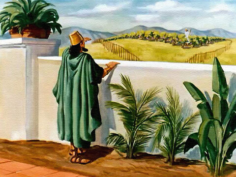 Right next to his own garden, just on the other side of the wall, was a fine vineyard. The vines were heavy with fruit, and the king could see that the land was good. – Slide 4