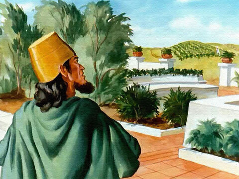 Right away King Ahab wanted that vineyard. Why, it was just what he needed to enlarge his garden! He could tear out the grape vines and plant whatever he wanted to. – Slide 5