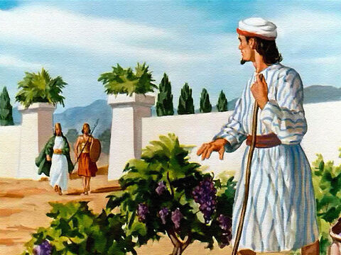 Greatly excited by his new discovery, King Ahab went to see the owner of the vineyard – a man by the name of Naboth. – Slide 6