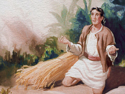'Me? I'm supposed to deliver my people from the Midianites? Gideon was sure a mistake had been made. – Slide 8