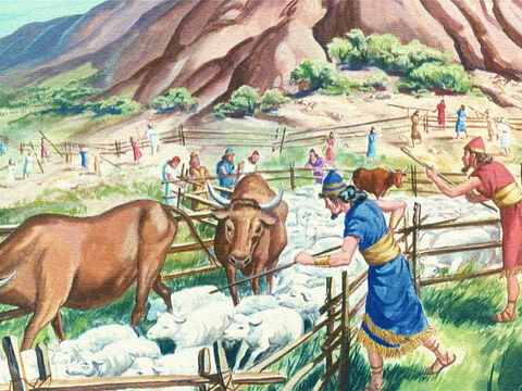 First, they fenced in all the cattle, for God had warned that even the animals would die if they touch the Holy Mountain. – Slide 12