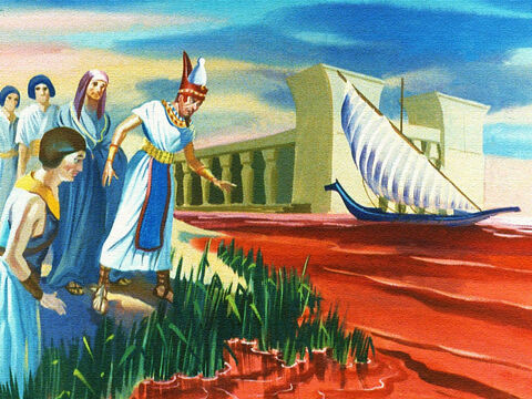 Moses warned Pharaoh that unless the children of Israel were set free, God would send great plagues upon the land of Egypt but Pharaoh refused to listen. On one occasion the Lord turned all the water in the land to blood. The air was filled with the stench of dead fish and there was no water to drink anywhere. But Pharaoh refused to let the people go. – Slide 6